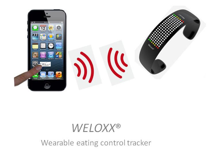 WeLoxx300